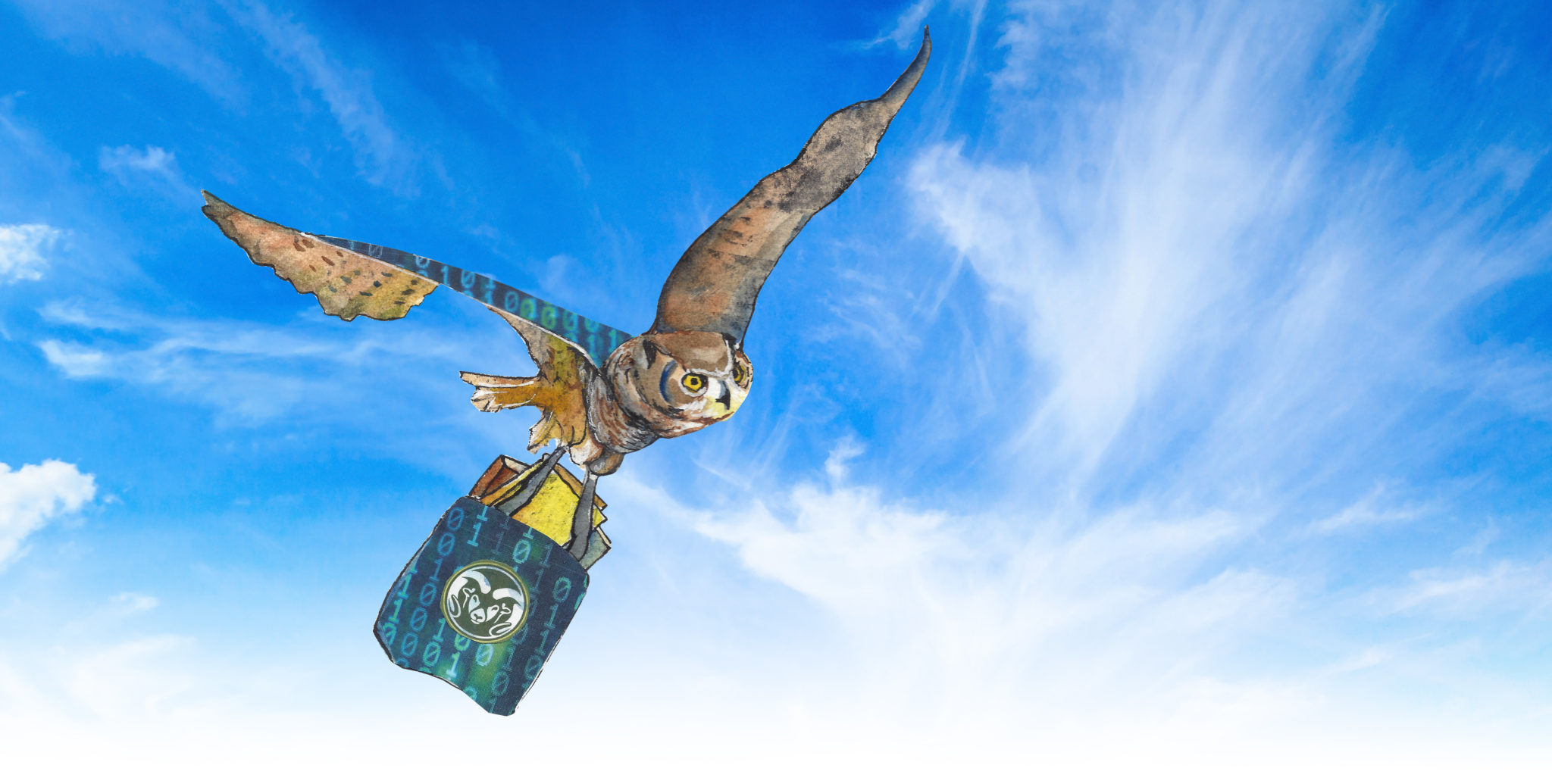illustration of and owl carrying books in flight